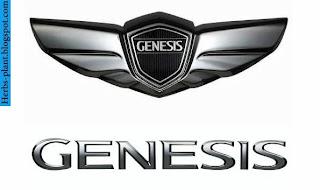 Hyundai genesis car 2012 logo - صور شعار سيارة هيونداى جينيسيس 2012