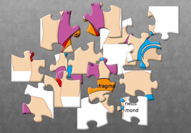 http://www.jigsawplanet.com/?rc=play&pid=191f58ffce1f