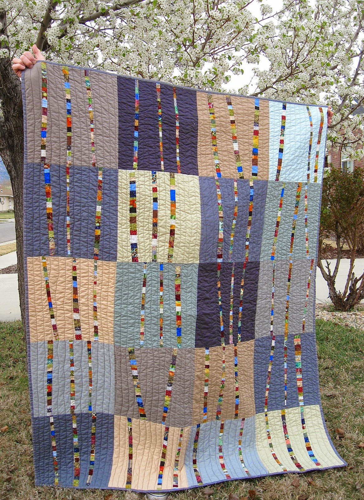 Cathy's CRAZY BY DESIGN: Birch Trees Quilt Finished : masculine quilt - Adamdwight.com