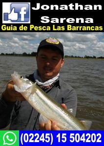 Jonathan Sarena