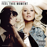 Pitbull feat Christina AguileraFeel This Moment [DJ Wined Mash!