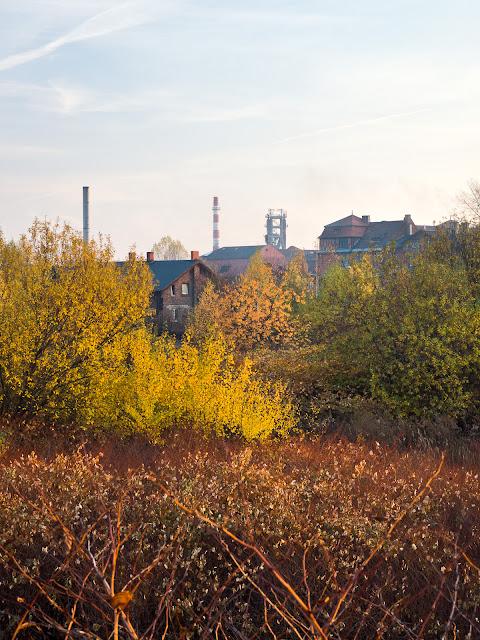 Jesienna fotografia krajobrazu miejskiego. Hałdy, Kaufhaus, Huta Pokój - Ruda Śląska. fot. Łukasz Cyrus, Katowice