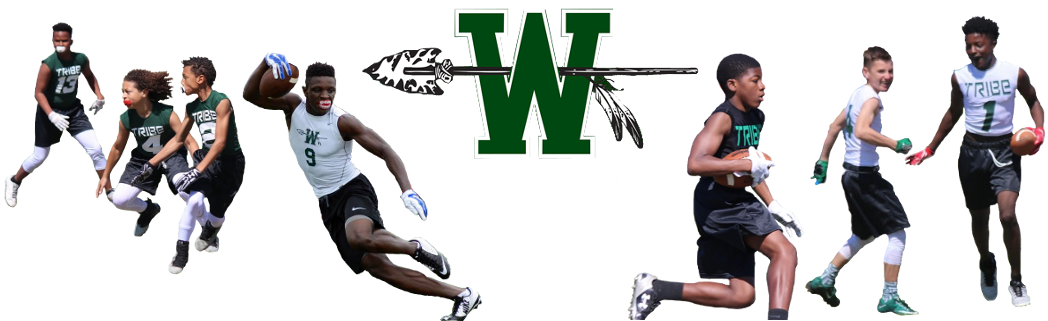 TRIBE 7ON7