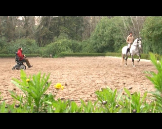 fotografia de Miguel Bragança sentado na cadeira de rodas a orientar um treino de um cavaleiro