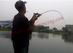Fish On Giant SnakeHead With Bait Casting ( BC )