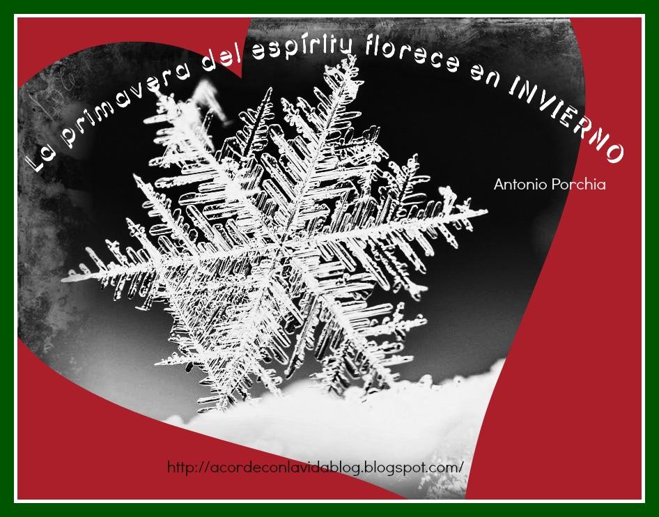 * Saludos invierno...¡Por fin!... ¿O no...? *