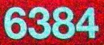 n6384.jpg