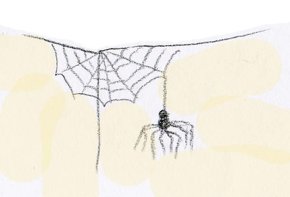 ahorrar, arañas comen insectos