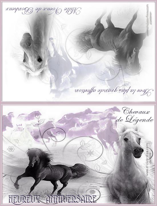 Carte Invitation Anniversaire Cheval Gratuite A Imprimer Ppautosearchkevoilafr Lisaoycwilson Site