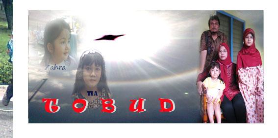 T O B U D 2