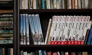 Biblioteca Dixital Internacional para nen@s