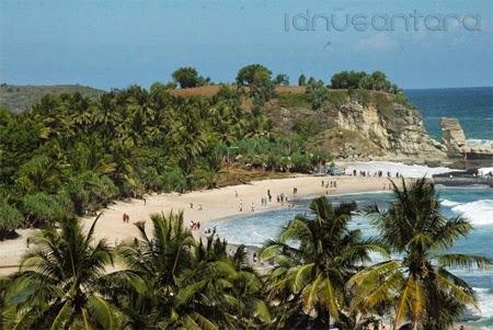 Pantai Klayar dikelilingi pohon Kelapa