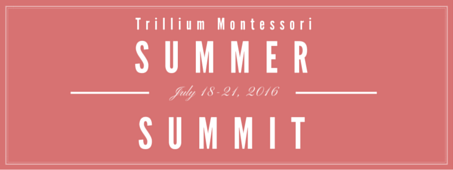 FIRST EVER! On-Line Montessori  Conference