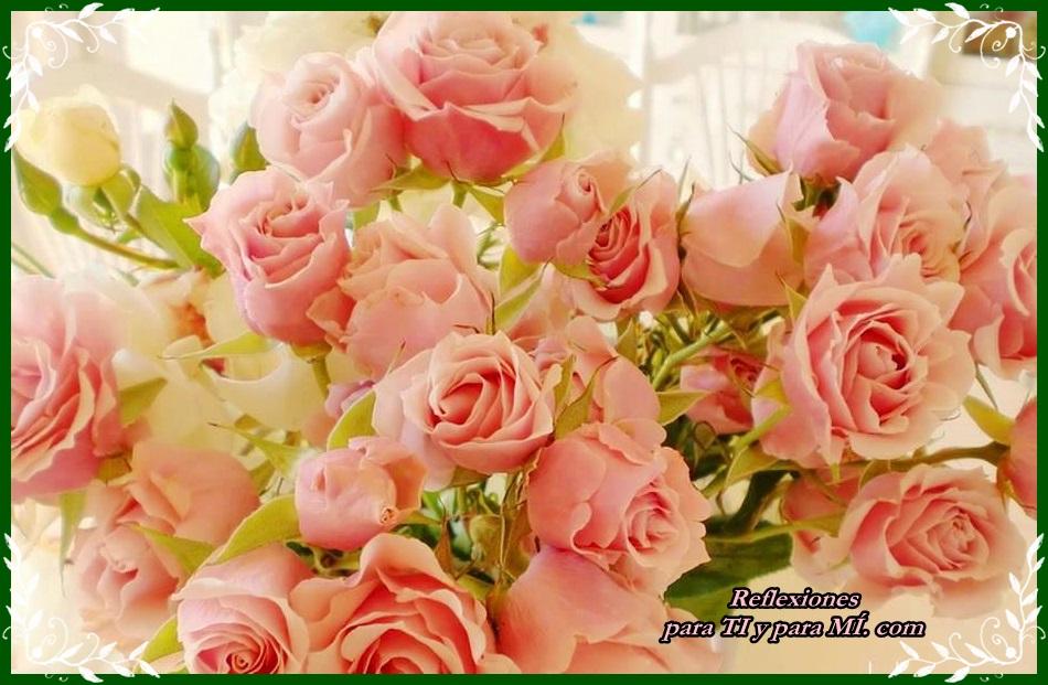 Buenos Deseos para TI y para MÍ: * Hermoso ramo de Rosas palo de rosa