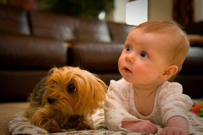 Los niños de fabiola Captura-de-pantalla-2010-12-01-a-las-162636