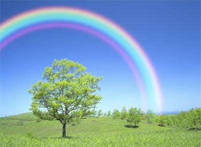 http://1.bp.blogspot.com/-rHb-vkuL4MI/Tdut5Yn485I/AAAAAAAAACA/pxGvGWbTkXQ/s1600/exp-rainbow-main.jpg