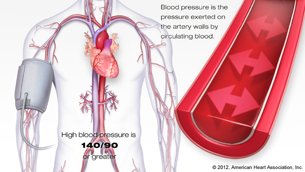 The Anatomy Of Touch What Massage Does Lowers Blood Pressure