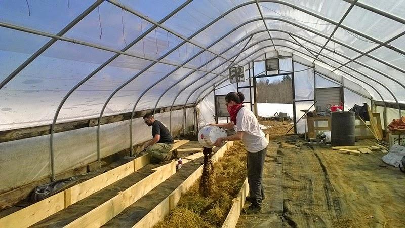 Citaten Hoop House : Building raised garden beds in your hoop house concord
