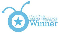 Cricut Circle Winner