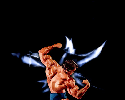 Arnold Schwarzenegger Bodybuilding Wallpapers 9
