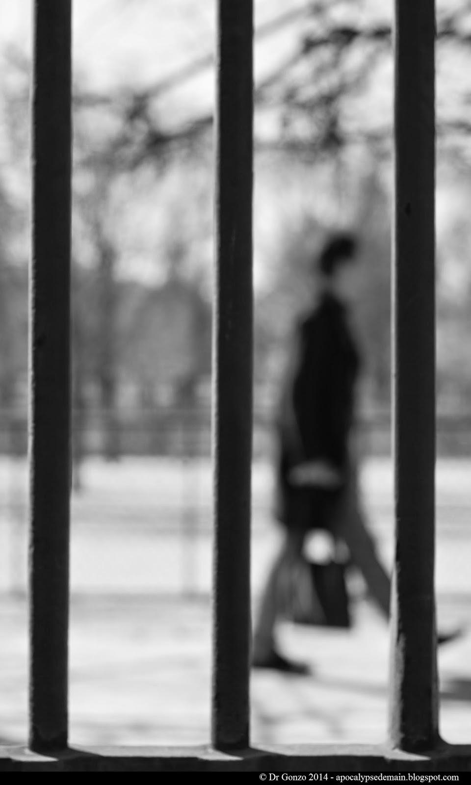 Paris-statue-tuileries-passant-flou