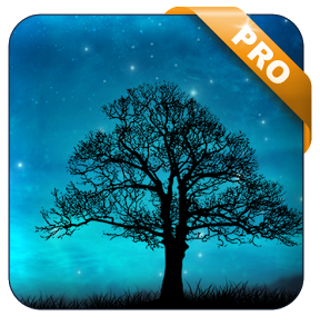 Dream Night Pro Live Wallpaper v1.2.6