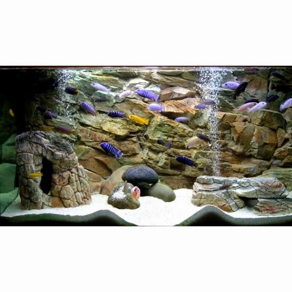 Fish tank decorations 3d background 2017 fish tank for Diy fish tank