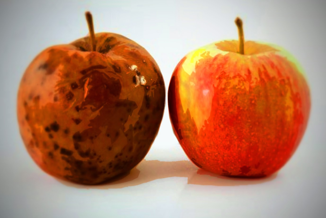 the rotten apple injures its neighbours The rotten apple injures its neighbour awarning that people of bad character corrupt all those with whom they come into contact the proverb is found in a number of variant forms, some of which are illustrated below.