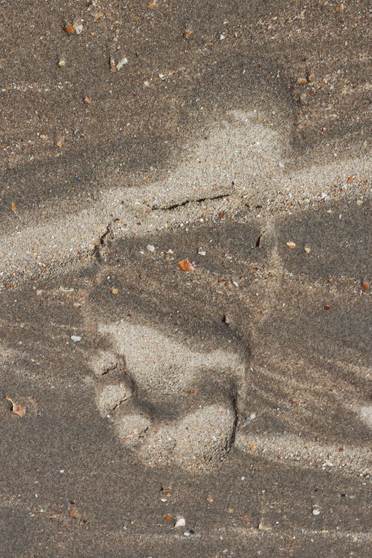 striped bare male footprint in sand