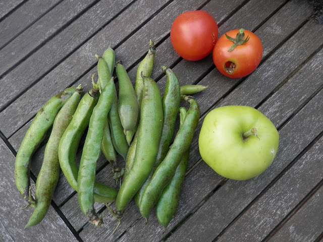 My Garden Harvest, September 2015.  Raspberries, spring onion, broad beans, tomatoes, rainbow chard, spinach beet.  secondhandsusie.blogspot.co.uk