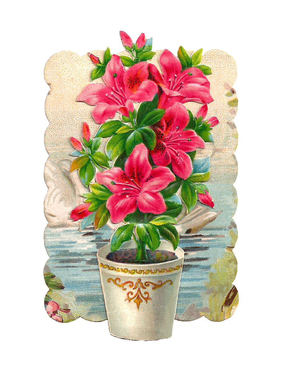 http://1.bp.blogspot.com/-rKz-LqOGnw0/Up5MG-m1Y6I/AAAAAAAASH8/AhRBO--sccQ/s1600/potted_flowers_pink_backgroundpng.png