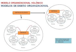 modelo organizacional holonico-modelos de estructuras organizacionales