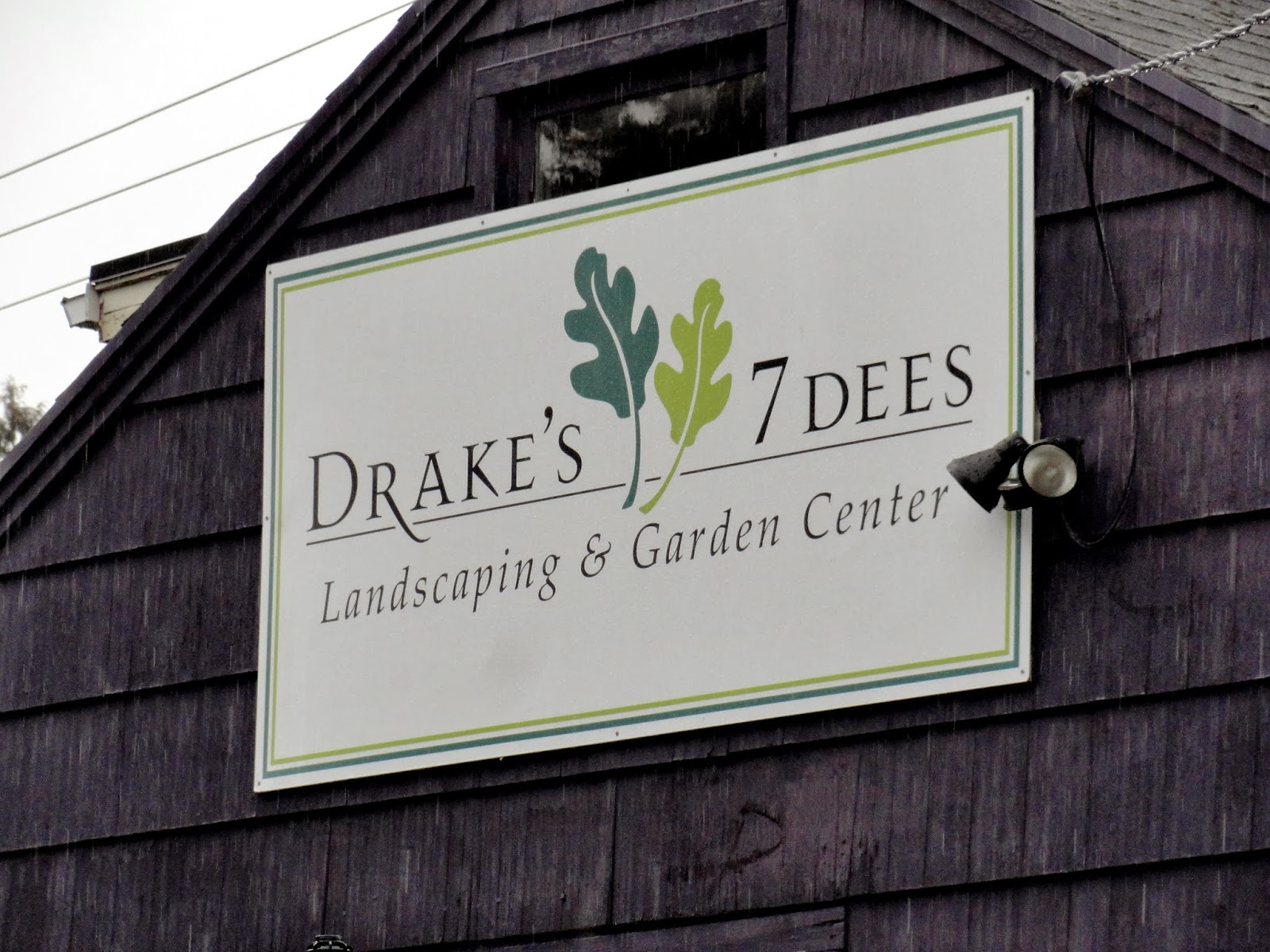 My Fellow Portland Garden Blogger And Friend Anna Kullgren Recently Accepted A Position As Istant Manager At Drake S 7 Dees When She Was Interviewing
