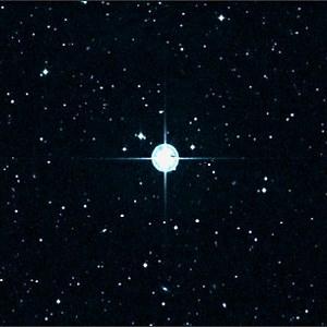 estrella matusalen
