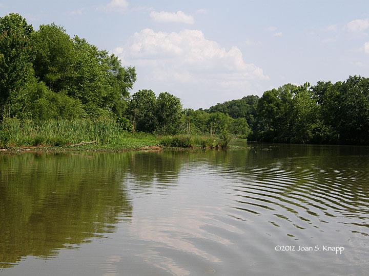 Anybody seen my focus oconee river south to lake oconee for Lake oconee fishing