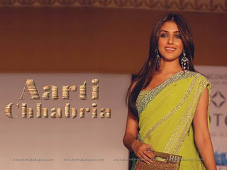 Aarti Chabria saree wallpaper1 -  Aarti Chabria saree hot wallpapers