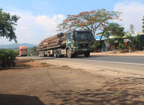 Gia Lai: Chưa mạnh tay với nạn xe quá tải