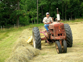 raking hayfield 4