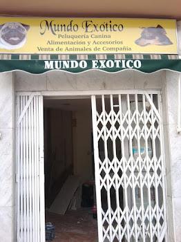 Oficinas Lectura de Tarot en Sta. Cruz