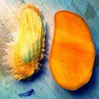 manfaat dan kandungan biji buah mangga