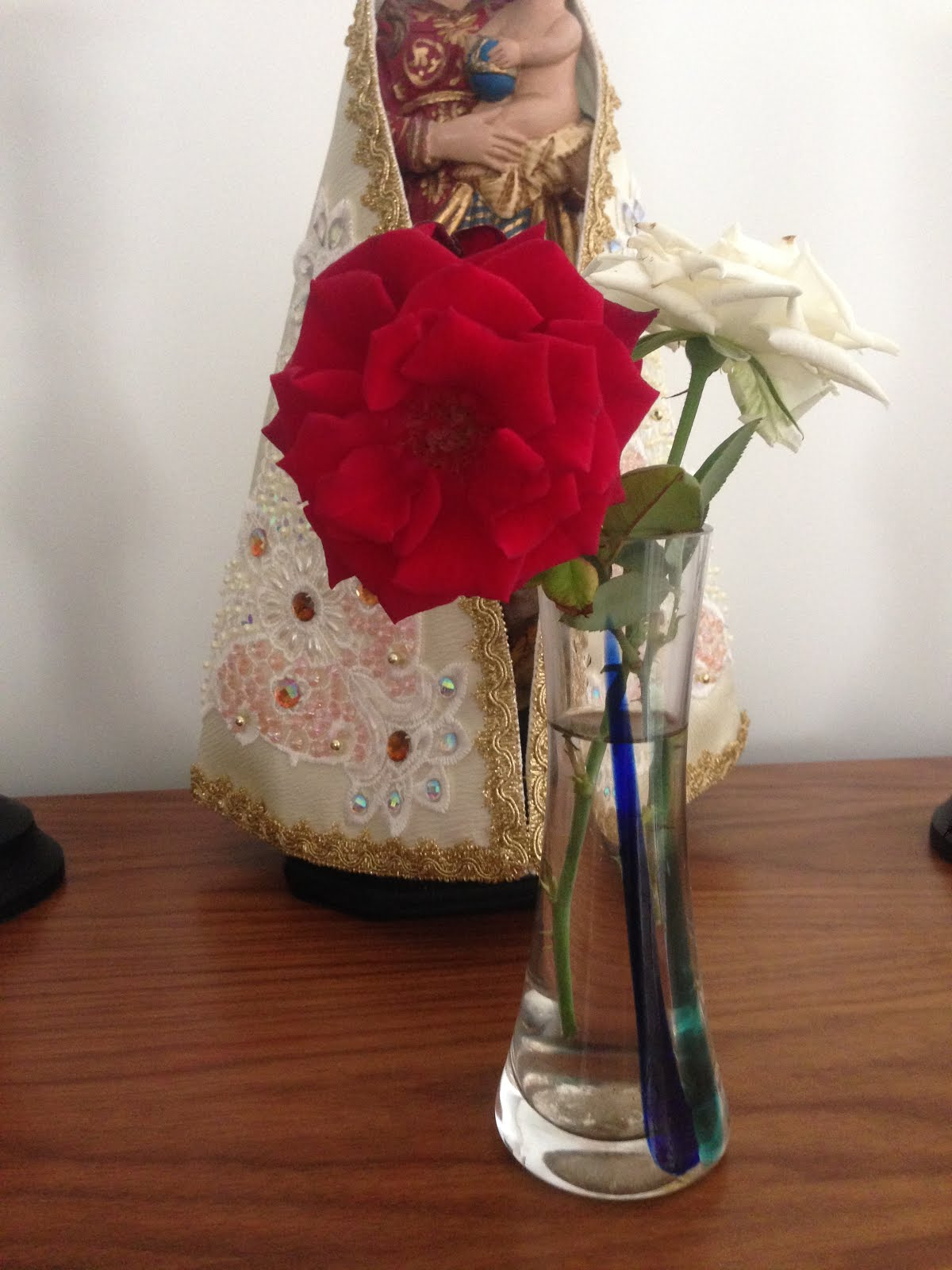 Flores do meu jardim
