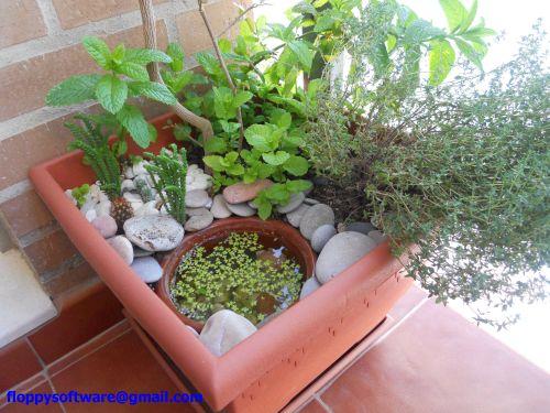 Pedestal para plantas leroy merlin wroc awski informator - Estanque jardin leroy merlin ...