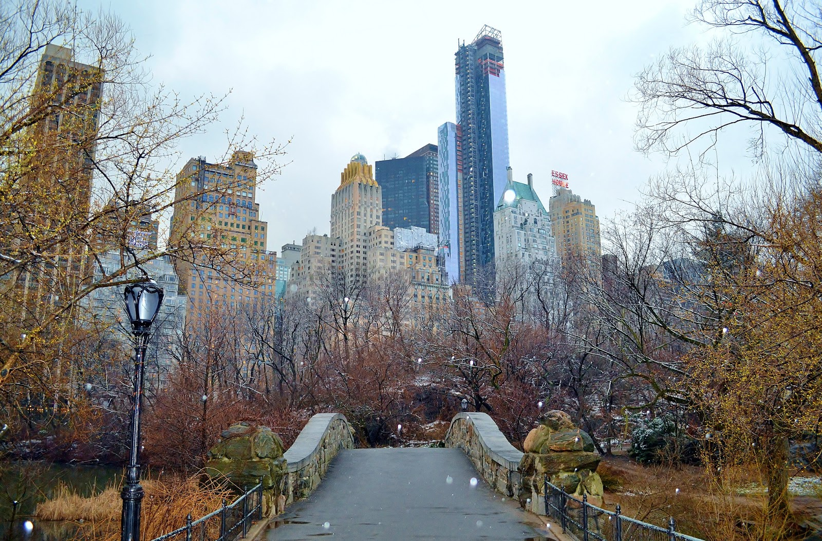 my walking pictures late winter walk in central park