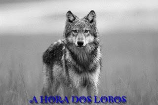 Lobos imagens em preto e branco.