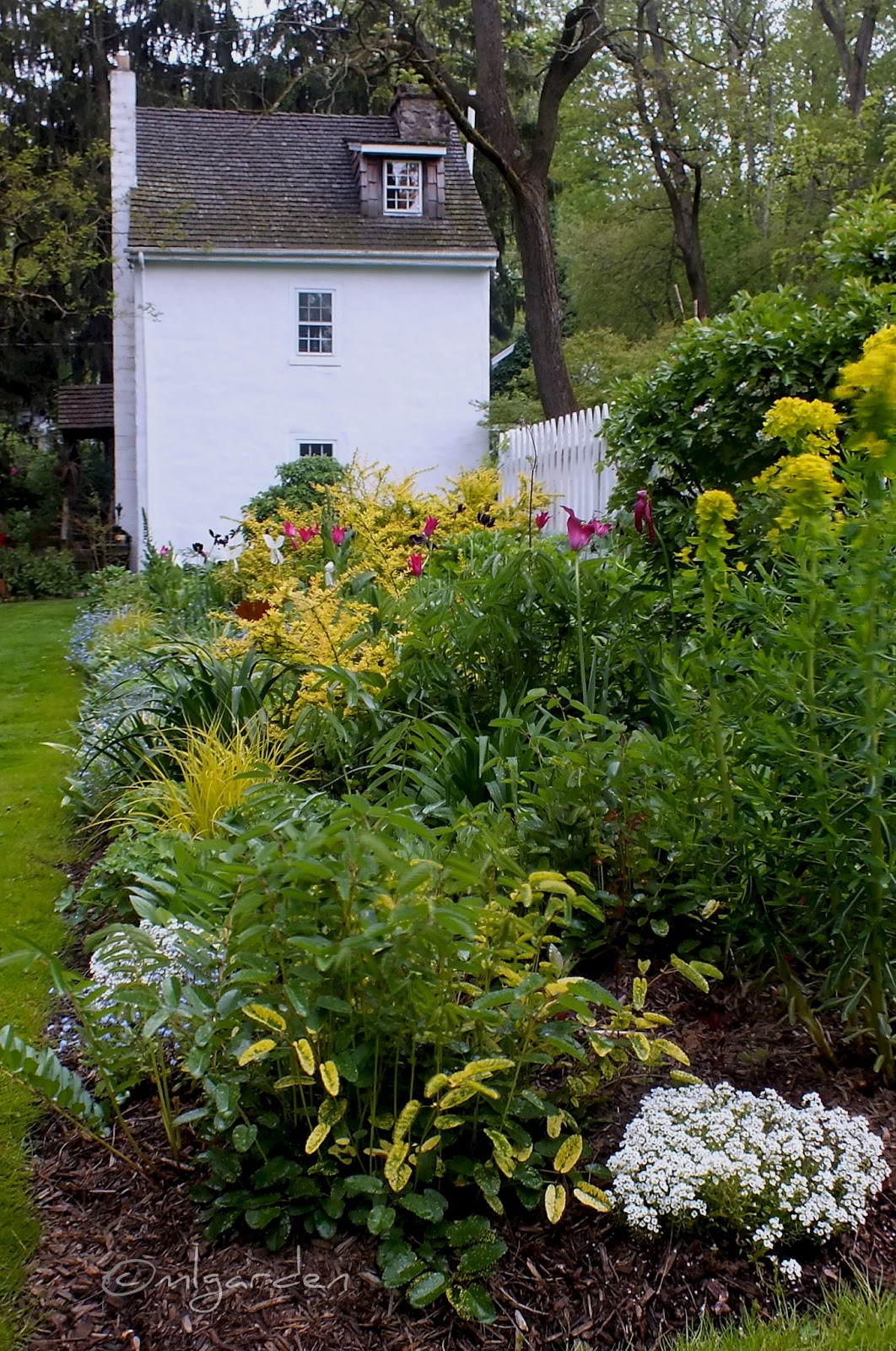 It Is Obvious That This Garden Was Created (and Continues To Evolve)  Because Two Gardeners Are Passionate About Plants. As Gardeners We Hope To  Be Able To ...