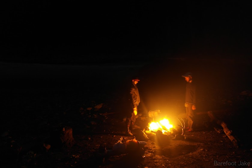 camping quinault