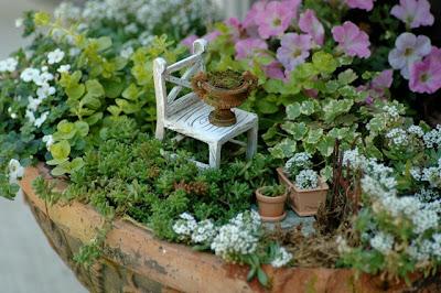 Una cosa piccola tripudio di giardini in miniatura - Giardino in miniatura ...