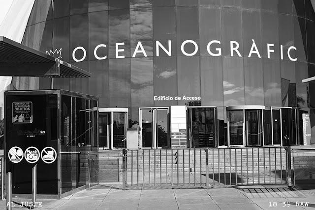 Fotografías en la Ciudad de las Artes y las Ciencias. L'Oceanogràfic