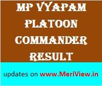 MP Vyapam Result