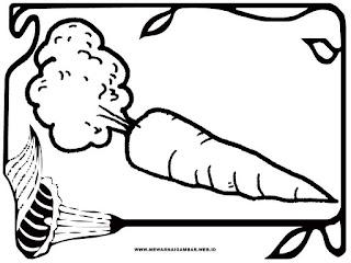 gambar wortel untuk diwarnai